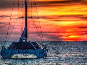 de ce ai nevoie de un ghid in oceanul pacific